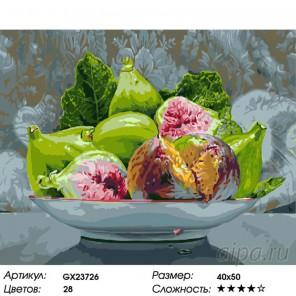Количество цветов и сложность Спелый инжир Раскраска картина по номерам на холсте GX23726