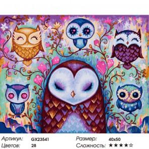 Количество цветов и сложность Совиная красота Раскраска картина по номерам на холсте GX23541