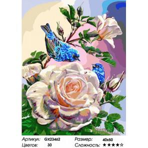 Количество цветов и сложность Птицы на розе Раскраска картина по номерам на холсте GX23462