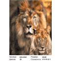Львиная чета Раскраска картина по номерам на холсте