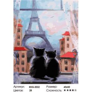 Количество цветов и сложность Вечером в Париже Раскраска картина по номерам на холсте RDG-3032