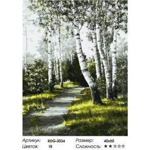 Количество цветов и сложность Березовая аллея Раскраска картина по номерам на холсте RDG-3034