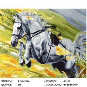 Количество цветов и сложность Скорость Раскраска картина по номерам на холсте RDG-3016
