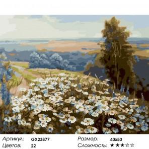 Ромашковая лужайка Раскраска картина по номерам на холсте