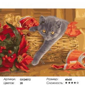 Количество цветов и сложность Кот в корзинке Раскраска картина по номерам на холсте GX24012
