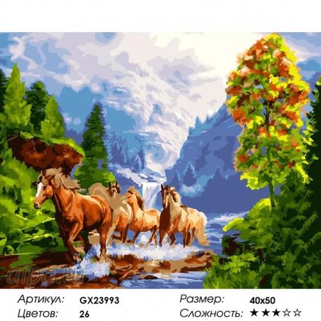 Количество цветов и сложность Вольные кони Раскраска картина по номерам на холсте GX23993
