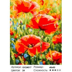 Количество цветов и сложность Степные маки Раскраска картина по номерам на холсте GX24017