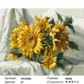 Количество цветов и сложность Лучистые подсолнухи  Раскраска картина по номерам на холсте GX23486