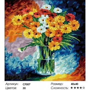 Сложность и количество цветов  Ромашковый коллаж Раскраска по номерам на холсте CF007