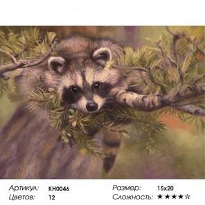 Сложность и количество цветов  Енотик Раскраска мини по номерам KH0046