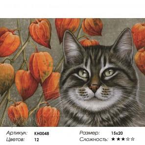 Сложность и количество цветов  Мечтатель Раскраска мини по номерам KH0048