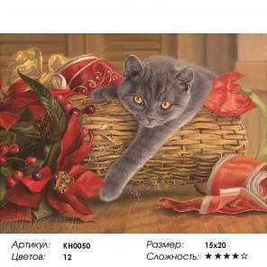 Сложность и количество цветов  Подарок Раскраска мини по номерам KH0050