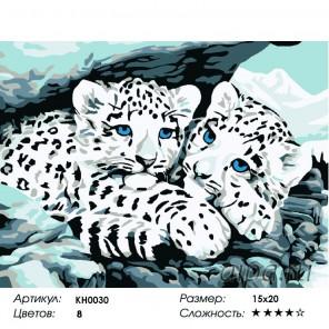 Количество цветов и сложность Снежные барсы Раскраска мини по номерам KH0030