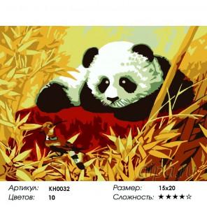 Количество цветов и сложность Панда Раскраска мини по номерам KH0032