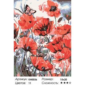 Количество цветов и сложность Дикие маки Раскраска мини по номерам KH0036