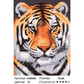 Количество цветов и сложность Красавец Раскраска мини по номерам KH0038