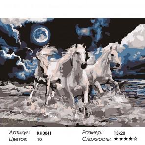 Количество цветов и сложность Белоснежная тройка Раскраска мини по номерам KH0041