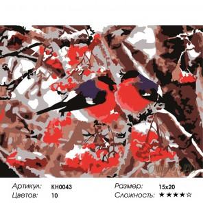 Количество цветов и сложность Снегири Раскраска мини по номерам KH0043