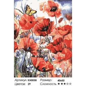 Количество цветов и сложность Дикие маки Раскраска картина по номерам на холсте KH0058