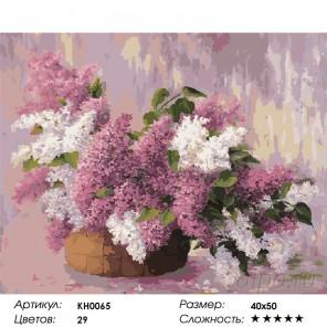 Сиреневый микс Раскраска картина по номерам на холсте KH0065