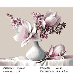Количество цветов и сложность Букет с магнолией Раскраска картина по номерам на холсте KH0067