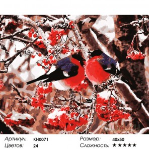 Количество цветов и сложность Снегири Раскраска картина по номерам на холсте KH0071