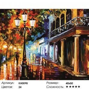 Количество цветов и сложность Волшебная ночь Раскраска картина по номерам на холсте KH0098