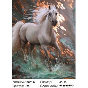 Количество цветов и сложность Стремительный Раскраска картина по номерам на холсте KH0126