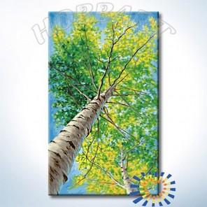 Количество цветов и сложность В тени берёз Раскраска по номерам на холсте Hobbart DZ3050008-Lite