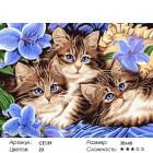 Количество цветов и сложность Голубоглазые котята Раскраска картина по номерам на холсте CE139