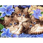 Голубоглазые котята Раскраска картина по номерам на холсте CE139