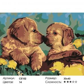 Количество цветов и сложность Милые щенки Раскраска картина по номерам на холсте CE102