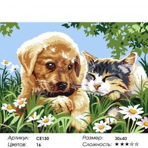 Количество цветов и сложность Большая дружба Раскраска картина по номерам на холсте CE130