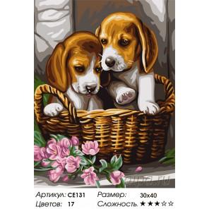Количество цветов и сложность Семейное фото Раскраска картина по номерам на холсте CE131