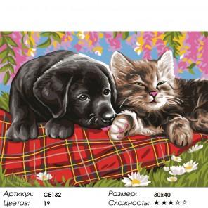 Количество цветов и сложность Сладкие мечты Раскраска картина по номерам на холсте CE132