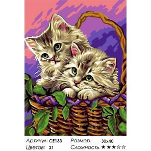 Количество цветов и сложность Очаровашки Раскраска картина по номерам на холсте CE133