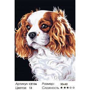 Количество цветов и сложность Забавный щенок Раскраска картина по номерам на холсте CE136