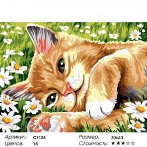 Количество цветов и сложность Поиграйте со мной Раскраска картина по номерам на холсте CE138