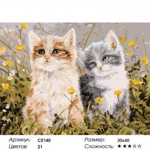 Количество цветов и сложность Шалуны Раскраска картина по номерам на холсте CE140