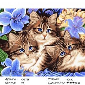 Количество цветов и сложность Три котенка Раскраска картина по номерам на холсте CG728