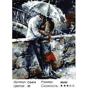 Двое под зонтом Раскраска картина по номерам на холсте