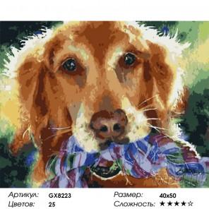Количество цветов и сложность Корби Раскраска по номерам на холсте GX8223