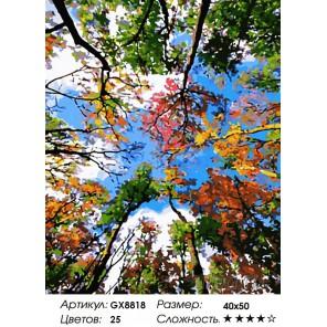 Цветные кроны Раскраска по номерам на холсте