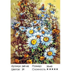 Букет с ромашками и бабочкой Раскраска картина по номерам на холсте Белоснежка