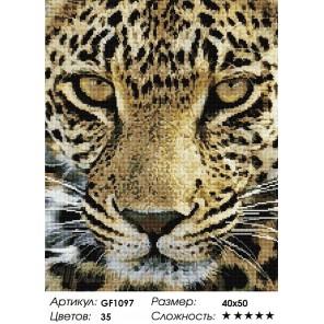 Взгляд хищника Алмазная мозаика вышивка Painting Diamond