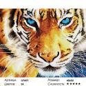 Количество цветов и сложность Хищный взглядАлмазная мозаика вышивка Painting Diamond GF459