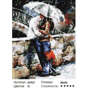 Двое под зонтом Алмазная мозаика вышивка Painting Diamond