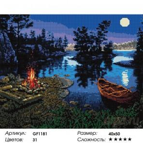 Количество цветов и сложность Лунная ночь Алмазная мозаика вышивка Painting Diamond GF1181
