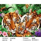 Количество цветов и сложность Тигриные нежности Раскраска картина по номерам на холсте GX24183