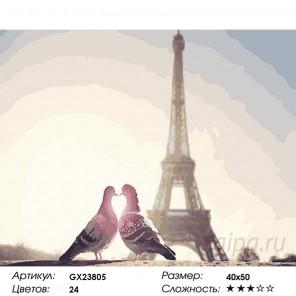 Париж и голуби Раскраска картина по номерам на холсте GX23805